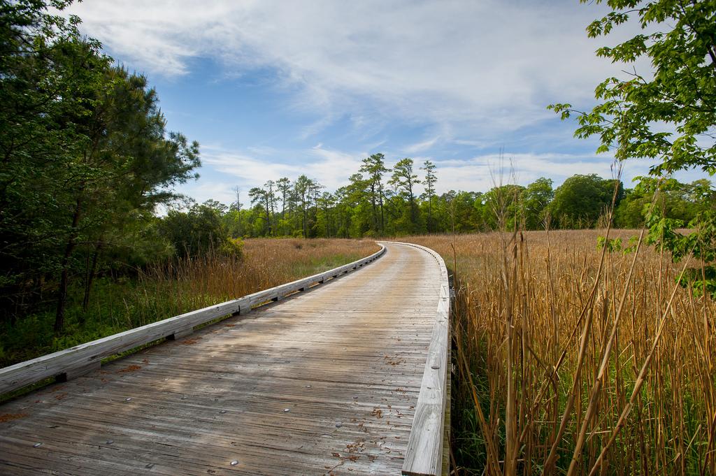 Jamestown Island Bridge